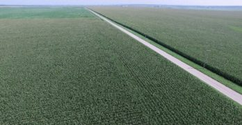 Schrader sells Illinois farmland for $55.3 million